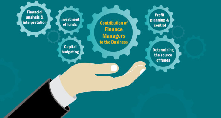 business finance manager roles and responsibilities